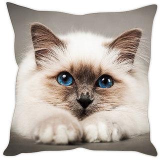 Fairshopping Cushion Cover White Cute Cat  (PMCCWF0047)