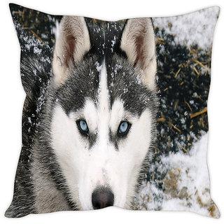 Fairshopping Cushion Cover White Rose Blue Cover  (PMCCWF0778)