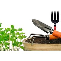 Garden Tool Kit Pack Of 3 Tools