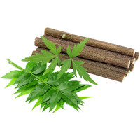 Organic Neem Chew sticks for healthy teeth and gums - 10 Nos