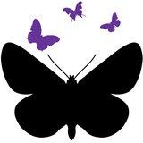 Chipakk Chalkboard Butterfly - Purple (Medium)