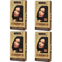 Indus Valley Organic Botanical Hair Colour Indus Black One Time Use (Set Of 4)