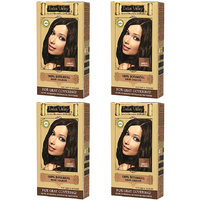 Indus Valley Organic Botanical Hair Colour Brown One Time Use (Set Of 4)
