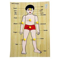Baby Flocks Parts Of Body – Educational Wooden Toy