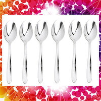6pcs Spoon Set Cutlery (Tea Spoon)