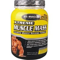 Big Muscle Xtreme Muscle Mass Chocolate 2.5Kg