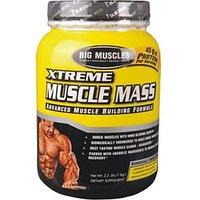 Big Muscle Xtreme Muscle Mass Chocolate 2.5Kg