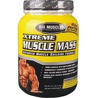 Big Muscle Xtreme Muscle Mass Chocolate 1Kg
