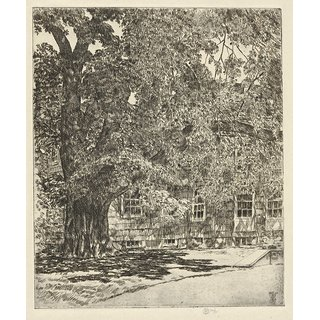 The Museum Outlet - Giant Elm, 1929 - Poster Print Online Buy (24 X 32 Inch)