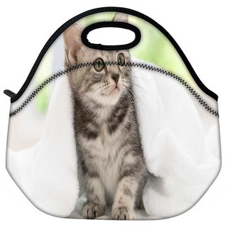 Snoogg Cute Kitty Travel Outdoor Tote Lunch Bag