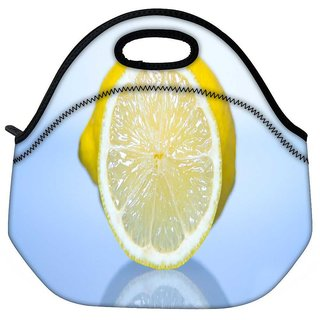 Snoogg Lemon Travel Outdoor Tote Lunch Bag