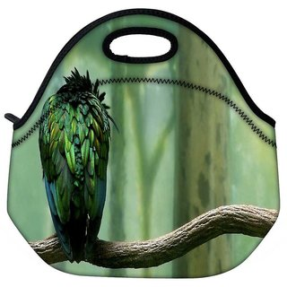 Snoogg Back Feather Sparrow Travel Outdoor Tote Lunch Bag