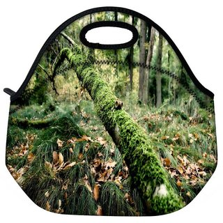 Snoogg Fallen Tree Travel Outdoor Tote Lunch Bag