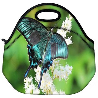 Snoogg Multicolor Butterfly Travel Outdoor Tote Lunch Bag