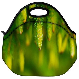 Snoogg Green Fruits Travel Outdoor Tote Lunch Bag