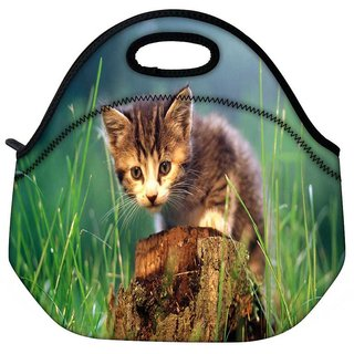 Snoogg Kitty Travel Outdoor Tote Lunch Bag