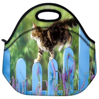 Snoogg Cat Walking Travel Outdoor Tote Lunch Bag