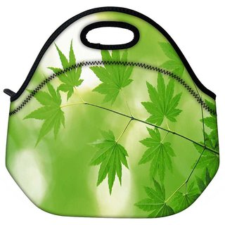 Snoogg Neem Leaves Travel Outdoor Tote Lunch Bag
