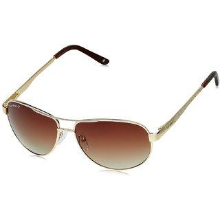 Joe Black Aviator Sunglasses JB-753-C1P
