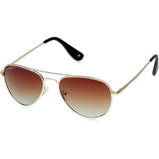 Joe Black Aviator Sunglasses JB-751-C1P