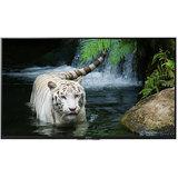 Sony BRAVIA KDL-43W800D 43inch (108cm) Full HD 3D SMART LED TV