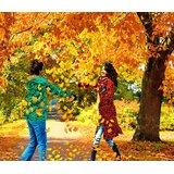 Affordable Art India Figurative Canvas Art AEAT22b