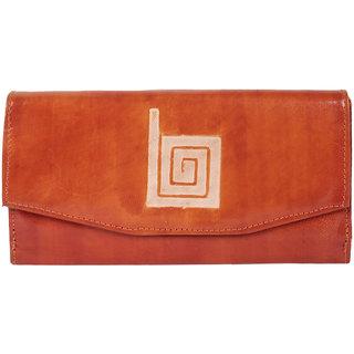 BAGS CRAZE Stylish  Sleek Clutches  Wallets BC-ONLB-673