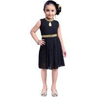 Aarika Girls Self Design Impoted Power Net Bombay Dress