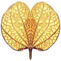 Dusshera Special 250mg Aapta Paan Gold Coin By Parshwa Padmavati Gold