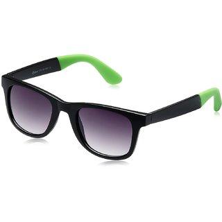 Rockford Wayfarer Sunglasses (RF-071-C3)