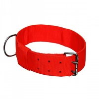 Canin Care Red Large Collar - For Large Breeds