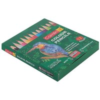 Kokuyo Camlin  Color Pencils                       12 Shades Half Size
