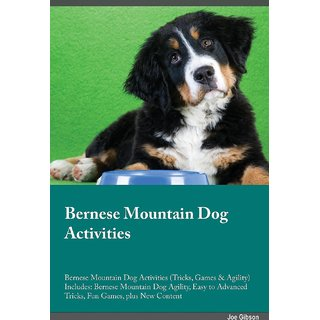 Bernese Mountain Dog Activities Bernese Mountain Dog Activities (Tricks, Games  Agility) Includes