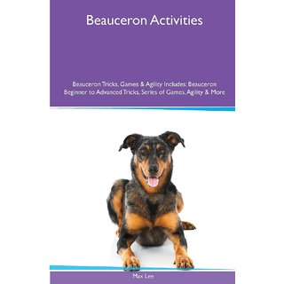 Beauceron  Activities Beauceron Tricks, Games  Agility. Includes