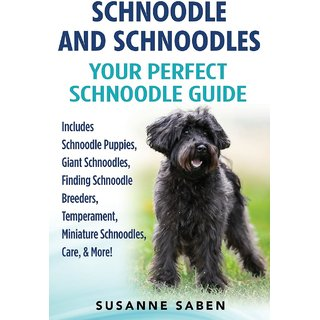 Schnoodle And Schnoodles