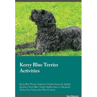 Kerry Blue Terrier Activities Kerry Blue Terrier Activities (Tricks, Games  Agility) Includes