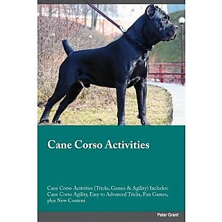 Cane Corso Activities Cane Corso Activities (Tricks, Games  Agility) Includes