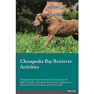 Chesapeake Bay Retriever Activities Chesapeake Bay Retriever Activities (Tricks, Games  Agility) Includes