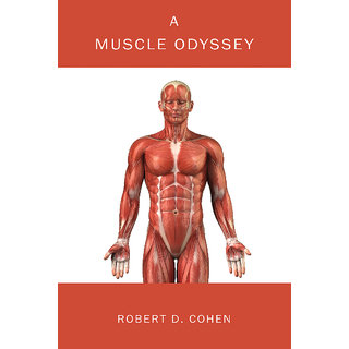 A Muscle Odyssey