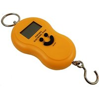 LCD Digital Hanging Weighing scale 50 kg WHA04 portable scale