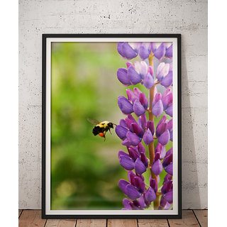 Wall Frame Natures Beautiful Selfie PBFC-2