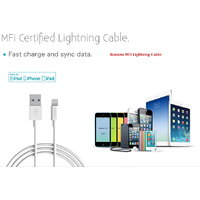 Romoss MFI Lightning Cable 5, 5S, 6, 6S - 6 Months Manufacturer Warranty