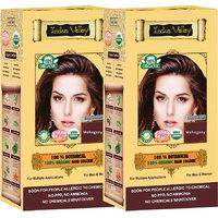 Indus Valley 100 Organic Botanical Mahogany Hair Color - Twin Set