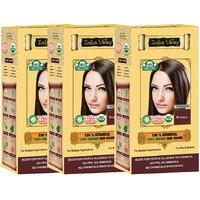 Indus Valley 100 Organic Botanical Brown Hair Color - Set Of 3
