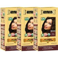 Indus Valley 100 Organic Botanical Dark Brown Hair Color - Triple Set
