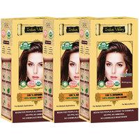 Indus Valley 100 Organic Botanical Mahogany Hair Color - Triple Set
