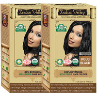 Indus Valley 100 Organic Botanical Indus Black Hair Color - One Touch Pack - Twin Set
