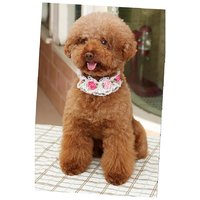 Magideal Pet Dog Cat Puppy Imitation Pearls Necklace Flower Lace Collar Belt White M