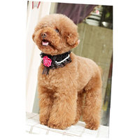 Magideal Adjustable Pet Dog Cat Puppy Lace Flower Necklace Collar Neck Strap Black S