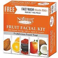 Natures Essence Magic Fruit Facial Kit